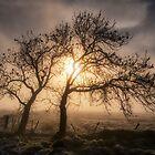 Foggy Morning by Jeremy Lavender Photography