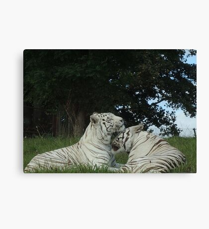Quite Fond Of You Actually Canvas Print