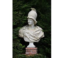 Bust of Alexander the Great Photographic Print