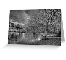 Winter Willow B&W Greeting Card