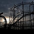 Coaster Silhouette by Country  Pursuits