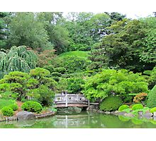 Japanese Garden at Brooklyn Botanical Gardens  Photographic Print