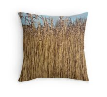 wall of wheat Throw Pillow
