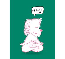Yoga Puppy Photographic Print