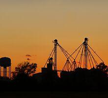 Sunset & Silos by WildestArt