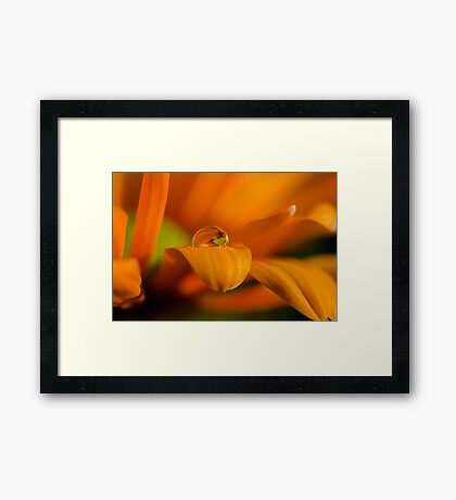 Soul drop  Framed Print