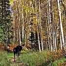 To Hike With A Moose Travel Mug by Gene Praag