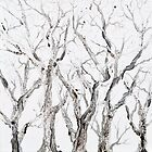 Bare Branches by Regina Valluzzi