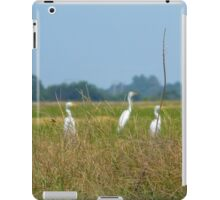 Three Herons & A Red Wasp iPad Case/Skin