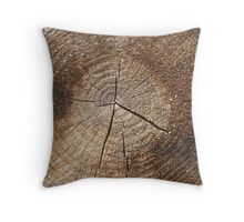 Cross section of pine tree trunk Throw Pillow