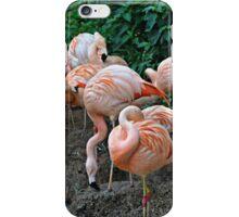 Flamingo Ridge iPhone Case/Skin