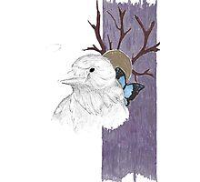 Nevermore tree Photographic Print