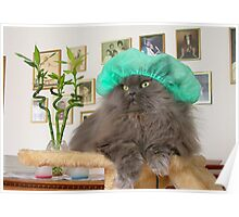 Romeo With Green Surgery Cap Poster