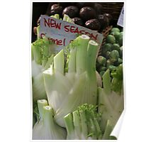 Fennel Poster