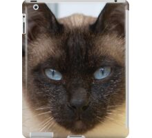 Gorgeous Bluepoint Siamese Cat iPad Case/Skin