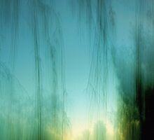 twilight through rain by deepbluwater