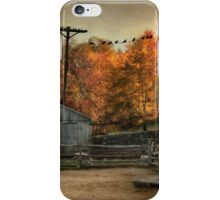 Afternoon Respite iPhone Case/Skin