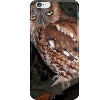 Eastern Screech Owl / Red Morph iPhone Case/Skin