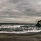 Punakaiki Coast by Paul Mercer