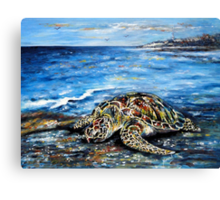 See Turtle Canvas Print