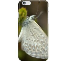 Beauty On The Wing iPhone Case/Skin