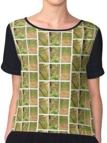 Macro Nature Triptych Green Chiffon Top