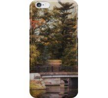 Splendor in the Park iPhone Case/Skin
