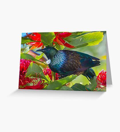 Tui in waratah flowers. Greeting Card