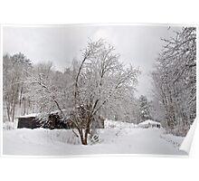 Winter 3/14/14 #3 Poster