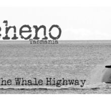 The Whale Highway Bicheno Tasmania Sticker
