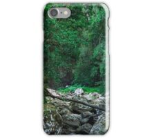 Lamington National Park - Dry Creek Bed iPhone Case/Skin
