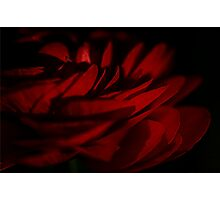 Scarlet Waves  Photographic Print