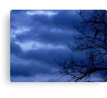Troubled Skies Canvas Print