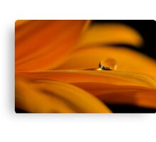 Drop on Top  Canvas Print