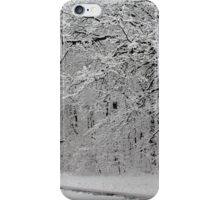 Snow in New York City  iPhone Case/Skin