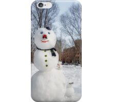 Snowbound Red Sox Fans iPhone Case/Skin