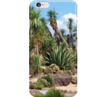 Arid Zone  iPhone Case/Skin