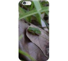 Hidden Frog  iPhone Case/Skin