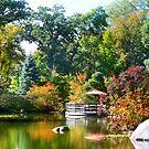Sunday in the Garden by Nadya Johnson