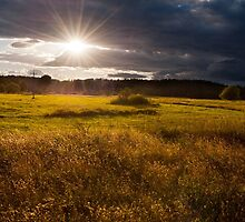 breathtaking sunset above meadow  by Arletta Cwalina