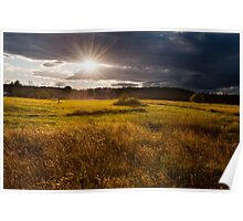 breathtaking sunset above meadow  Poster