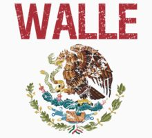 Walle Surname Mexican by surnames