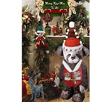 ¸¸.♥➷♥•*¨HAVE YOURSELF A BEARY LITTLE CHRISTMAS ¸¸.♥➷♥•*¨ Photographic Print