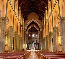 St.Patricks Cathedral  by Larry Lingard-Davis