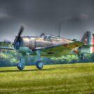 Curtis H75 - C1 Hawk by Nigel Bangert