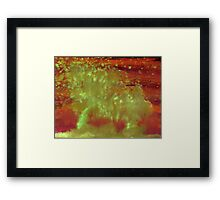 WDV - 204 - Dune Trees Framed Print