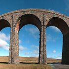 Ribblehead Viaduct, Panorama by Stephen Knowles