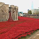 We will Remember them. by Ray Clarke