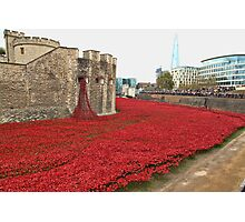 We will Remember them. Photographic Print
