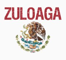 Zuloaga Surname Mexican by surnames